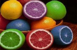 генетически модифицированные организмы, вред, мутации, еда, днк, продукты, использование, я - Рус