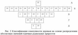 молодой лес, Россия, в России почти нет деревьев старше 200 лет, Я - Рус!
