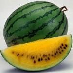 ГМО семена. Ловушка для человечества