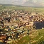 Выжженные леса Кавказа в 19 веке восстанавливали казаки