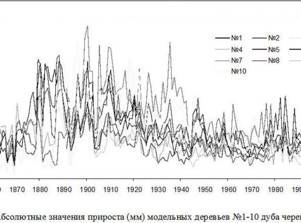 Какой возраст деревьев России или откуда 200 лет